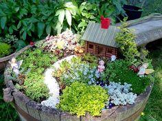 Потрясающая идея для участка мини сад в горшке   Colors.life
