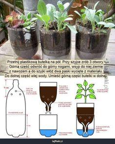 Veg Garden, Vegetable Garden Design, Garden Planters, Planter Pots, Hydroponic Gardening, Container Gardening, Garden Crafts, Garden Projects, Diy Self Watering Planter