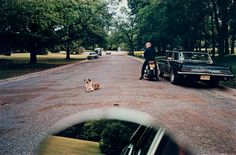William Eggleston, Untitled (Mirror dog road), 1970-1973