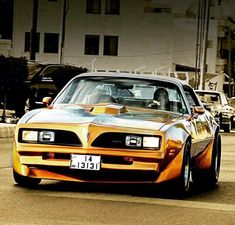 That's a sweet looking ride 1978 Pontiac Trans Am, Pontiac Firebird Trans Am, Pontiac Gto, Pontiac Banshee, Old American Cars, American Muscle Cars, Firebird Car, Car Pictures, Car Pics