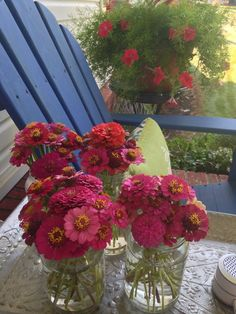 my back porch July 6 2014 - zinnias I just cut that I raised from seeds gathered from flowers from last years flowers.  In background you'll see asparagus fern with red petunias mixed in for contrast along with Adirondack furniture I stained in a cobalt blue color for a pop.  I continue to save glass jars for flowers and candles en' masse for impact.