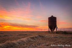 Ocaso en los campos de Castilla La Mancha, Albacete, España - Sunset in the fields of Castilla La Mancha, Albacete, Spain