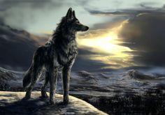Walking in the sun by WolfRoad.deviantart.com on @DeviantArt