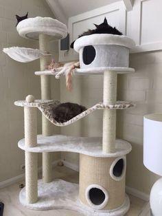 Arranhador de gato trono de ferro                              … #CatHouse #CatGatos