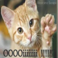 Mexicano Scraps: Vim te dizer Oi !!!