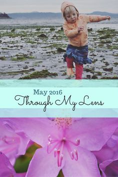 My favourite personal amateur photography photos from May 2016, shot on the Canadian West Coast, where nature and childhood thrive.