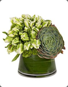 Green and white parrot tulips and succulent arrangement via Eddie Zaratsian.