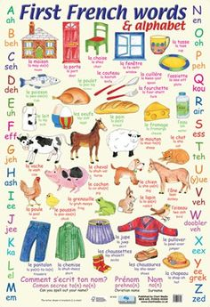First French Words - Learn The Alphabet in Frenchhttp://www.popartuk.com/childrens/first-french-words-cm65-mini-poster.asp