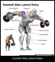 Dumbell Side Lateral Raise