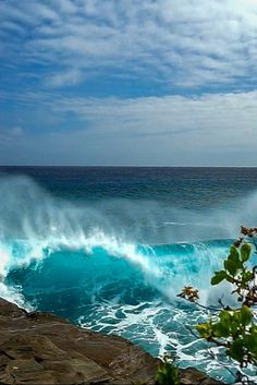 China Walls Oahu, is one of the most epic and dangerous surf spots in Hawaii as surfers glide past huge rock walls during each ride.