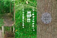 De groene man: metgezel van Moeder Natuur, een vruchtbare samensmelting   Fotografie:MDDW.NL