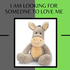 ezyshoponline_au New In Store our cute Farm animal plush range so soft and cuddly just waiting for someont to take them home to love 😍 Someone To Love Me, Toys Online, Farm Animals, Waiting, Plush, Teddy Bear, Range, Store, Friends
