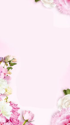 Background Flores, Flower Background Wallpaper, Flower Phone Wallpaper, Cute Wallpaper Backgrounds, Flower Backgrounds, Flower Wallpaper, Love Wallpapers Romantic, Beautiful Flowers Wallpapers, Pretty Wallpapers