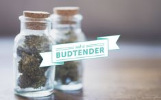 Learn how one budtender samples and familiarizes themself with new strains to better help dispensary customers find their ideal cannabis product.