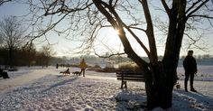 Warum der Winter in Bonn am schönsten ist
