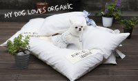 Organic Kiss Me Cushion