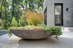 castro design studio,stunning garden design idea - oversized planter