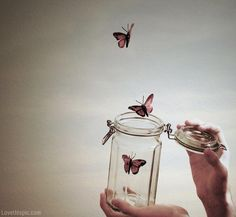 Stunning Photography, Vintage Photography, Art Photography, Conceptual Photography, Hipster Photography, Spring Photography, Butterflies Flying, Beautiful Butterflies, Flying Flowers