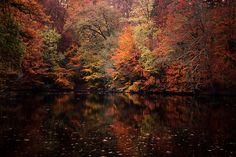 Autumn (via HandCrafted In Virginia, Tumblr).