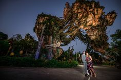 Jamie and Matt were the first couple allowed to do a Disney's Fine Art Photography portrait session in Pandora at Animal Kingdom without having to do a ceremony there!
