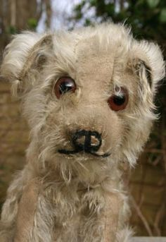 OLD VINTAGE ANTIQUE STEIFF MOLLY DOG/HUND (TEDDY BEAR) CIRCA 1920's
