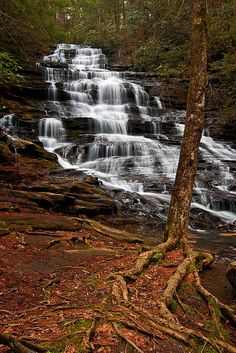 This Pin was discovered by Donna Posey. Discover (and save!) your own Pins on Pinterest. | See more about minnehaha falls.