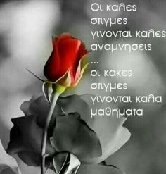 Best Quotes, Love Quotes, Greek Quotes, Cool Words, How Are You Feeling, Wisdom, Thoughts, Humor, Feelings