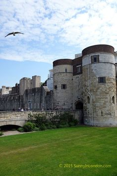 Take this test to see if you should Tour the Tower of London