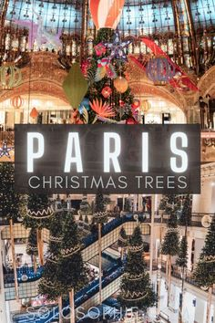 Christmas in France/ Beautiful Christmas Trees in Paris You'll Absolutely Love