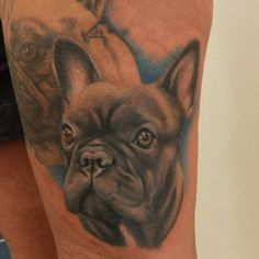 Great puppy portrait by Rachel Honeywell. French Bulldog Tattoo, Dog Tattoos, Dog Breeds, Tatting, Body Art, Tattoo Designs, Puppies, Dogs, Cute