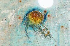 'Art of Underwaterworld  |  05' von Dirk h. Wendt bei artflakes.com als Poster oder Kunstdruck $16.99