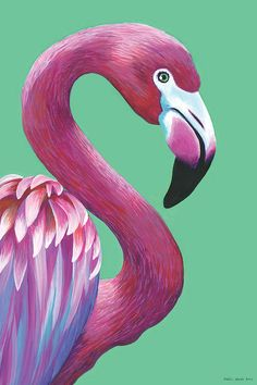 Buy Original Painting of 'Pretty Flamingo' by Kirstin Wood, Acrylic painting by Kirstin Wood / artist on Artfinder. Discover thousands of other original paintings, prints, sculptures and photography from independent artists. Flamingo Painting, Flamingo Art, Wood Canvas, Canvas Wall Art, Canvas Prints, Vintage Bird Illustration, Pop Art Drawing, Simple Cartoon, Kids Art Class