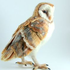 Stella, The Barn Owl by Robin Joy Andreae