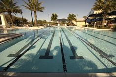 At the MiraBay Club you can exercise by doing laps in the jr. olympic size pool. MiraBay   Florida   Newland