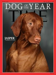 <3 Time's Dog of the Year: Jasper, America's Dog by @FiveFanPS