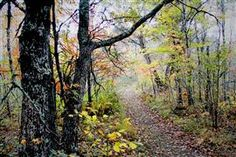 Original art for sale at UGallery.com | October by Gregg Otteson | photography