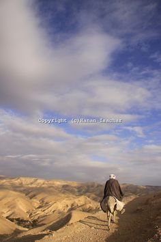 A view of the Judean Desert, Wadi Qelt, in the eastern West Bank.