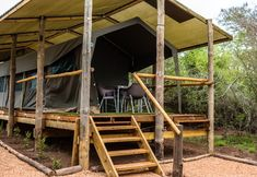 Hooikraal Tented Camp, Heidelberg Camping Needs, Camping 101, Backpacking Tent, Tent Camping, Campsite, Family Tent, Family Camping, Bunker Bed, Sporting Stores