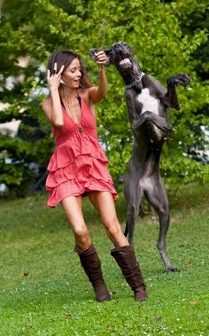 dancing together - #great #dane