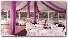Tent Draping