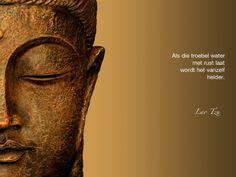 Als je troebel water met rust laat wordt het vanzelf helder. / Lao Tzu