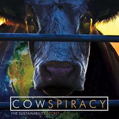 Assista @cowspiracy no @netflixbrasil muito bom! #Ssimplesmente #Sustentavel #sustainable #sustainability by ssimplesmente