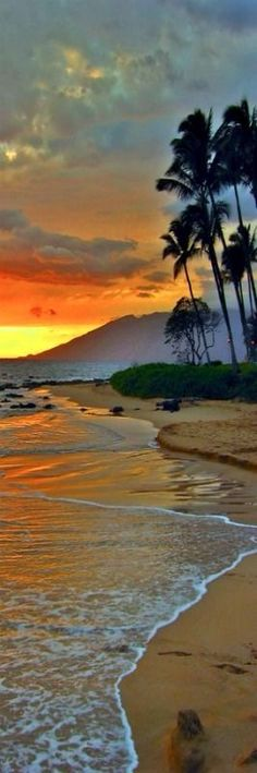 Top 10 Beaches for Summer 2017 Maui, Hawaii - Sunrise. I just love the layered look of this photo. a wonderful composition. - [someone else's excellent caption] Beautiful Sunset, Beautiful Beaches, Beautiful World, Paradis Tropical, Ocean Scenes, Vacation Spots, Hawaii Vacation, Palm Trees, Places To See