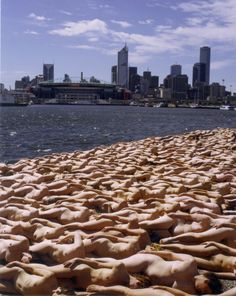Spencer Tunick stages scenes in which the battle of nature against culture is played out against various backdrops, from civic center to desert sandstorm, man and woman are returned to a preindustrial, pre-everything state of existence.   Tunick has traveled the globe to create these still and video images of multiple nude figures in public settings. Organizing groups from a handful of participants to tens of thousands, all volunteers, is often logistically daunting; the subsequent images…