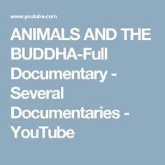 ANIMALS AND THE BUDDHA-Full Documentary  - Several Documentaries - YouTube