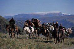 Welcome to nomadic life. #WelcomeToMongolia #Mongolia