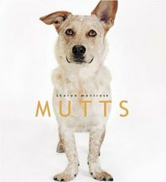 NAT'L MUTTS DAY is on the 2nd.