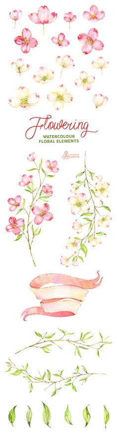 Flowering Elements. Watercolor clipart flowers leaves