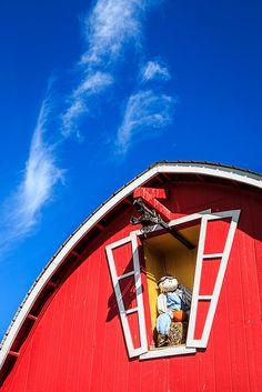 Annabelle's Fun Farm 918-323-6352