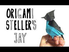 Origami Stellar's Jay (Riccardo Foschi) - YouTube